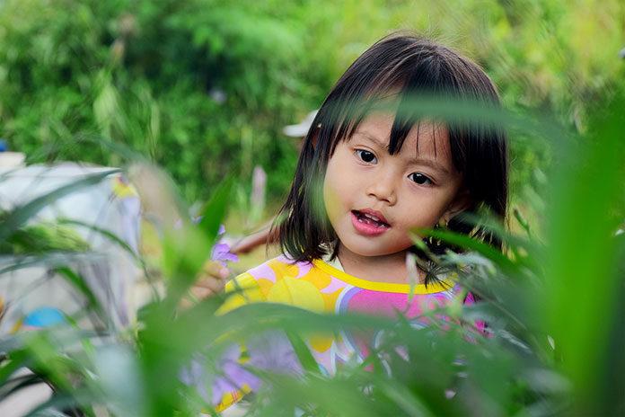 Kaszel alergiczny u dzieci a pylenie roślin